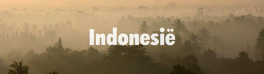 indonesie.jpg